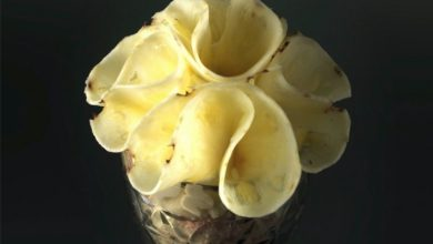 Photo of POCHETTE DI ANANAS
