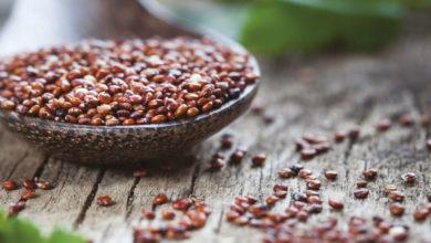 Photo of Il rilancio della quinoa