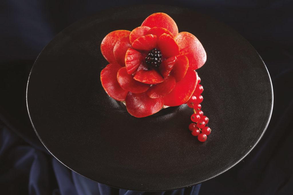 papavero in fiore