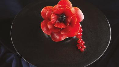 Photo of Tonon: Papavero in fiore