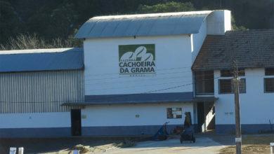 Photo of Sentori di cioccolato al mandarino nel Chacoeira da Grama, nuovo certificato CSC
