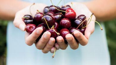Photo of Il frutto più amato